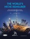 The World's Niche Reinsurer